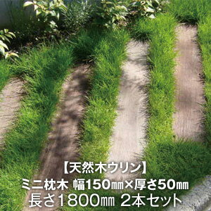【ウッドデッキ】天然木ウリン ミニ枕木 【2本セット】 幅150×厚さ50×長さ1800*__ulin-ma-180