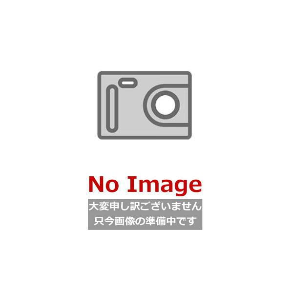 【フラッシュクーポン対象ショップ】[#FJ-XAICP6040S]カクダイ[KAKUDAI]レンジフード用センターパーツ[間口600mm・全高400mm用][ステンレス]