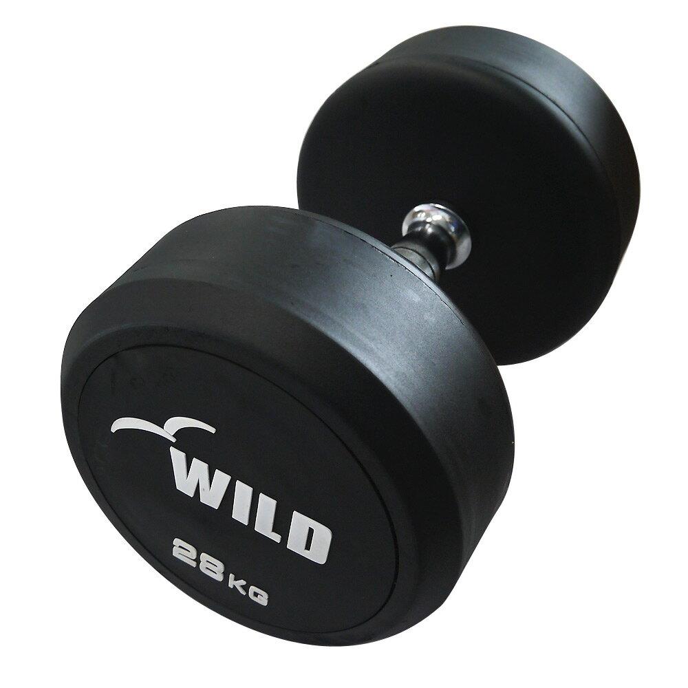 固定式ダンベル 28kg WF[WILD FIT ワイルドフィット] 送料無料 ダンベル ウエイト 筋トレ トレーニング 腹筋 背筋 ベンチプレス ジム 鉄アレイ