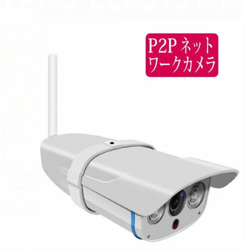 100万画素 屋外用 ネットワークカメラ RCC-7100WP 無線LAN、スマホ対応、SDカード,録画、動体検知録画他 (P2P IPカメラ rcc7100wp 有線LAN 赤外線 LED 距離15m IP67 防犯 監視)