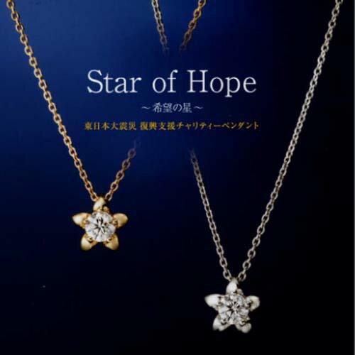 2014年 ラザールダイヤモンド Star of Hope 希望の星 ダイヤモンドネックレス 0.15ct K18WG or K18YG ~希望の星~ (限定品)【RCP】10P02Sep17