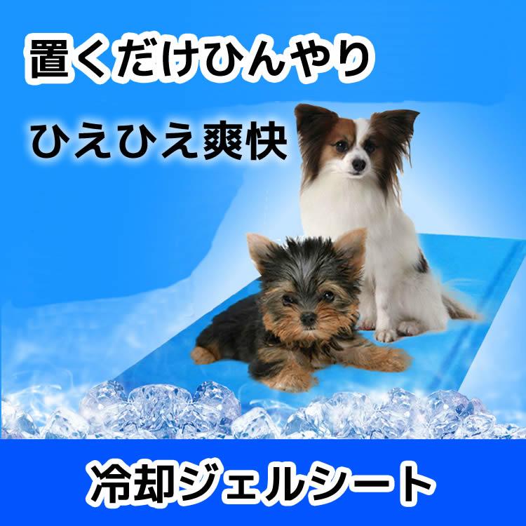 ひんやりシート ペットクールマット Lサイズ 50×65cm ひんやりマット クールジェルマット ペット用品 ひんやりグッズ 夏用 ひえひえ 涼しい 冷却マット 涼感冷感ジェルマット 冷たいパッド エコクーラー 熱中症 暑さ対策 防水 無地 中型 ペット 犬 猫