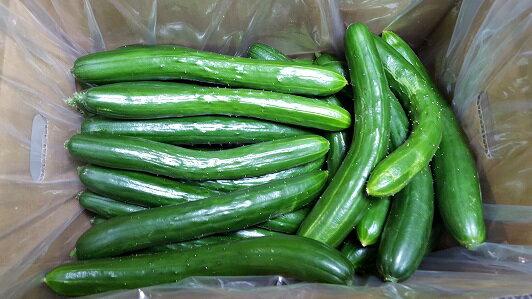 の の に ギネス いる され ない 野菜 栄養 一 て は ブック 登録 世界 として