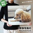 キャンバスプリント 特大サイズ 家族 ペット 犬 猫 カメラ スマホ 写真 絵画のような インテリア おしゃれ 記念品