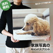 キャンバスプリント特大サイズ家族ペット犬猫カメラスマホ写真絵画のようなインテリアおしゃれ記念品