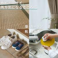 3off(スリーオフ)スプレー除菌・防カビ・消臭。3つの効果でたちまち清潔300mLスプレータイプ【携帯用30mLプレゼント】