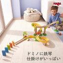 HABA クラビュースタンダードセット 木のおもちゃ ハバ社 2歳 3歳 4歳 HA303081 木のおもちゃ 玉ころがし 積み木 知育玩具レール