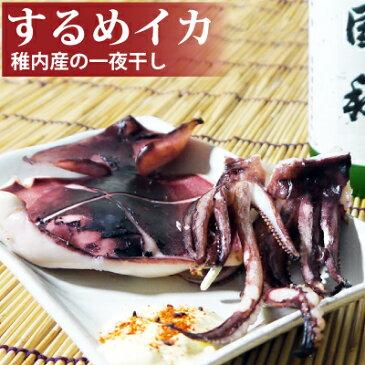 稚内産するめイカ一夜干し 肉厚なイカ焼き用の真イカ