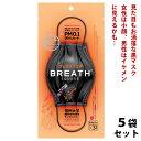 (5袋セット) 正規輸入品 黒マスク ブレスシルバー マスク ブレススクエア (BREATH SILVER SQUARE) 4層構造 ブレスマスク ナノマスク ブラックマスク プリーツマスク 大きめ 小顔 おしゃれ 使い捨て 韓国製