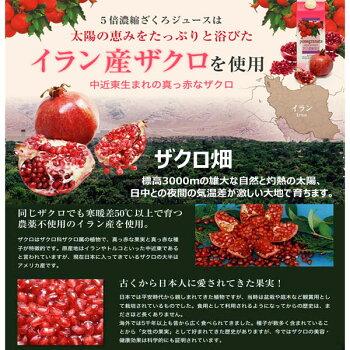 エンジェルハウスのザクロ濃縮果汁は農薬不使用の最高級イラン産ザクロを使用しています。