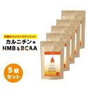 カルニチン+HMB&BCAA 5個セット ダイエットサプリメント 燃焼系ダイエット αリポ酸 ブラックジンジャー サラシアエキス 白インゲン デキストリン ジム 運動