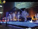 【イルミネーション】LED ネットライト【ブルーホワイト】【256球】【超光】【青】【白】【面】【ネット】【簡単】【工事】【均等】【電飾】【装飾】【クリスマス】【輝き】【美しい】【かわいい】【ライト】万能ネットライトが登場 広いので垣根やフェンスに最適