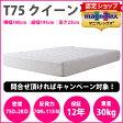 【正規販売店】マニフレックス 高反発マットレス T75(クイーン)【送料無料】