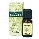 天然アロマオイルのやさしい香り。GAIAガイア ベルガモットFCF オーガニック アロマオイル【...