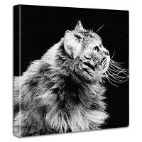 【アートデリ】壁掛けインテリアにファブリックパネル|猫