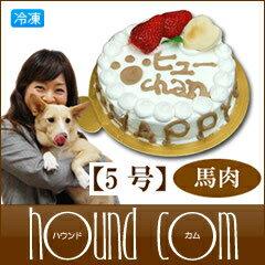 愛犬用ケーキ Happy Day ケーキ/5号/馬肉 犬 誕生日ケーキ バースディケーキ犬のケーキ 犬用ケーキ ペットのケーキ 誕生ケーキ バースデー ケーキ 誕生日 帝塚山ハウンドカム バースデー