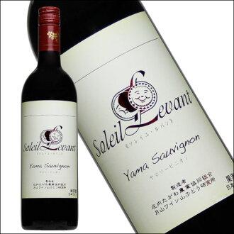 [月山葡萄酒·太陽·rubanyamasobinion/月山葡萄酒山葡萄研究所]日本葡萄酒紅葡萄酒國產葡萄酒