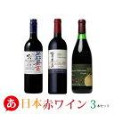【日本ワイン 送料無料】上質な日本の赤ワイン 3本セット赤ワイン セット 甲州ワイン 国産ワイン 山梨 贈答品