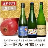 送料無料[ 林檎のスパークリング シードル 3本セット ]ワイン セット 国産 日本ワイン スパークリングワイン シードル10P03Dec16