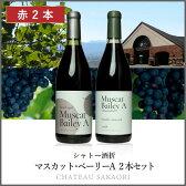 ★【シャトー酒折 2本セット】[ワインセット][甲州][国産ワイン][日本ワイン][山梨 ワイン]