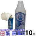 【送料無料】O2携帯酸素5リットル10本組