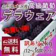 ブドウ デラウェア 送料無料 訳あり ブドウ ギフト ブドウ 敬老の日 山形市本沢産 高級葡萄 ハウスデラウェア2kg(12〜16房入り)