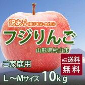 ふじりんご 訳あり 10kg L〜Mサイズ 送料無料 山形 ご家庭用 工藤農園 (若干のキズ、色むらあり) 有機減農薬栽培 サンふじりんご りんご 値段 産地 時期 りんごジュース