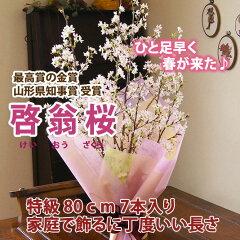 山形特産 冬に咲く桜 啓翁桜の花束 けいおうざくら...