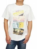 パープル&イエローpurple&yellow半袖Tシャツf4メンズ55-31TL24コムサイズム白ホワイト夏物フォトサーフプリント