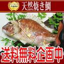 【ランキング1位獲得!】お食い初め お誕生日など晴れの日めでたい日は、淡路島魚幸の天然焼き...