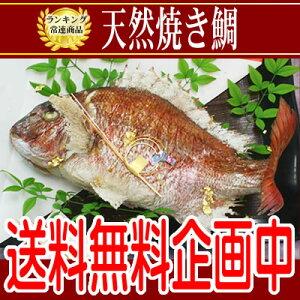 お食い初め お誕生日など晴れの日めでたい日は、淡路島魚幸の天然焼き鯛!味・姿・ともに特別な...