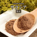 サラシア粉末(200g)天然ピュア原料そのまま健康食品/サラシアさらしあ※ネコポス不可
