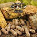 サラシアカプセル(220粒)天然ピュア原料そのまま健康食品/サラシアさらしあ※ネコポス不可