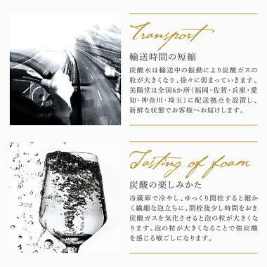 【新発売】美陽堂スパークリングウォーター炭酸水500ml×24本送料無料選べる4種類プレーン・レモンフレーバー・サイダーフレーバー・ヨーグルトフレーバー