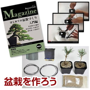 作り方冊子と盆栽素材、作る材料がセットになって登場盆栽を趣味にしたい人は必見!盆栽を作る...