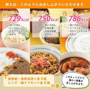 非常食レスキューフーズ1日セットカロリーアップセット(3年保存ホリカフーズ防災保存食備蓄お惣菜)