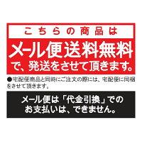 【メール便送料無料】匠の技最高級煤竹(すすたけ)耳かき二本組G-21534972525533171