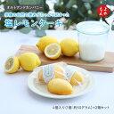 ベルジェ・ダルカディ弁慶堂:大人のレモンケーキ 10個入(クール冷蔵便)