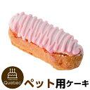 誕生日ケーキ バースデーケーキ 犬用 ワンちゃん用 エクレア ベリー味 ペットケーキ ジャペル