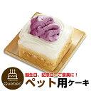 コミフ 紅いもと豆乳のショートケーキ ペットケーキ 誕生日ケーキ バースデーケーキ 犬用 ワンちゃん用 1