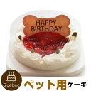 誕生日ケーキ バースデーケーキ 犬用 ワンちゃん用 コミフ いちごのバースデーケーキ ペットケーキ 送料無料(※一部地域除く)