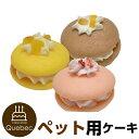 誕生日ケーキ バースデーケーキ ワンちゃん用 犬用 ワンちゃん用 ウーピーパイ3種セット(いちご味、さつま芋味、バナナ味) ペットケーキ
