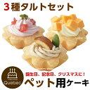 誕生日ケーキ バースデーケーキ ワンちゃん用 犬用 ワンちゃん用 プチタルトケーキセット (苺、栗、チーズ) ペットケーキ ペット用ケーキ