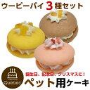 (ポイント消化)誕生日ケーキ バースデーケーキ ワンちゃん用 犬用 ワンちゃん用 ウーピーパイ3種セット(いちご味、さつま芋味、バナナ味) ペットケーキ