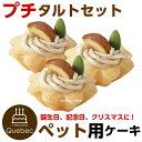 (ポイント消化) 誕生日ケーキ クリスマスケーキ ワンちゃん...