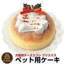 2019 クリスマスケーキ 犬猫用 チーズスフレ クリスマスケーキ ペットケーキ 送料無料(※一部地域除く)