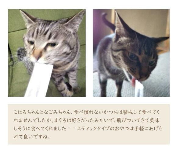 猫用国産ペーストおやつにゃめろうかつお味(10g×10本)【4袋までネコポスで発送】