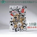 セラプトせんべい(長生きじゃこ入りせんべい) 50g×10袋【送料無料】