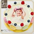 ≪写真ケーキ お祝い≫シェリーブランのオリジナル写真ケーキ5号サイズ直径15cm≪4〜6名用サイズ≫生クリーム・イチゴクリーム・チョコクリームの3種類から選べる写真ケーキ