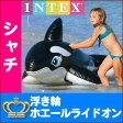 【予約開始】シャチ型 浮き輪 浮き具 フロート ビニール 海 プール 浮き具 子供用 ホエール ライドオン シャチ INTEX インテックス